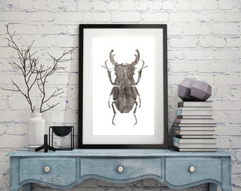 Wood Beetle Digital Download Poster / Wall Art / Modern Insect print / A4 A3 A2