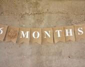 Months banner, Newborn Photo Prop, Baby Months Photo Prop, Burlap Banner