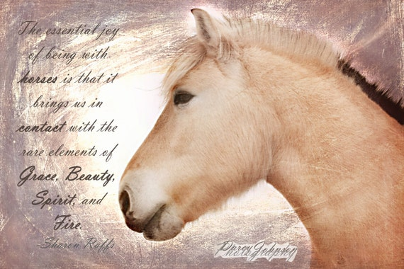 Items Similar To Horse Art, Beautiful Fjord Horse Portrait