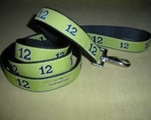 12th Dog Leash in Blue with Lime