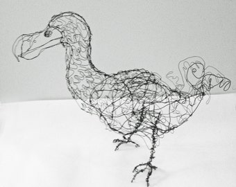 Dodo Bird-Wire Drawing Sculpture art