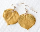 Gold Aspen Leaf Earrings, Nature Earrings, Bridesmaid Jewelry
