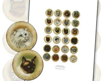 Antique Purebred Cat digital collage sheet 1 inch 25mm 25.4 mm bottlecap