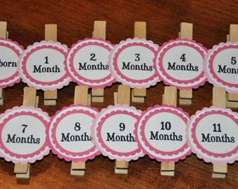Pink Photo Clips. Dark Pink. Light Pink. Yellow. Pink Lemonade Clips. Photo Banner. Set of 13. Newborn-12 Months