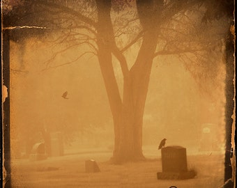 Graveyeard Crow Fog Photograph--Quoth the Raven...Fine Art