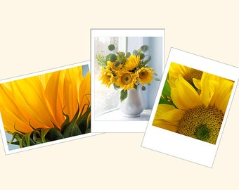 Sunflower Photo Cards, Three Flower Greeting Cards, Blank Cards,Floral Note Card Set