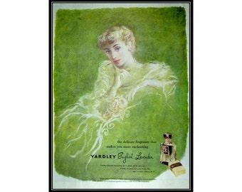 English Lavender by Yardley Powder Room Bathroom Wall Art Decor E114