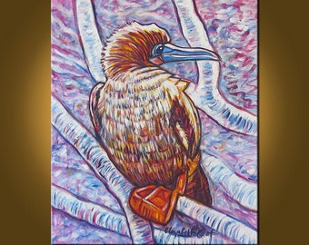 Art Painting -- Red Footed Booby -- 20 x 24 inch Original Oil Painting by Elizabeth Graf