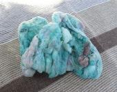 WoolpopsTarghee Wool in Early Sunset 1.6 oz