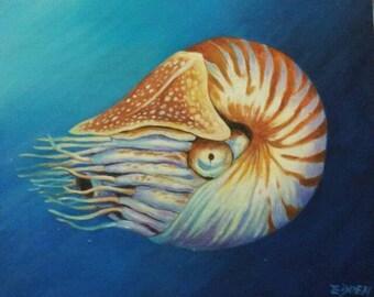 NAUTILUS-  Original Oil Painting Sea Shells Marine Life Coral Reef-Ready To Hang