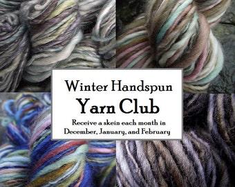 Winter Yarn Club Membership, Handpainted Handspun yarn 3 months free shipping, begins December
