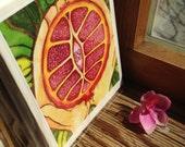 Pomegrante Card Set