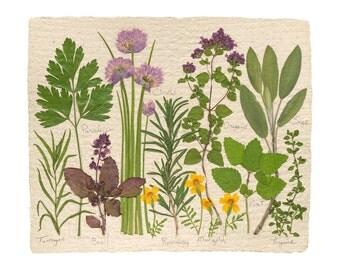 The Herb Garden, Fine Art Print