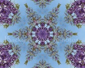 Wisteria Mandala Note Card Assortment, Nature Note Cards, Wisteria Blossoms, Purple Flowers, Kaleidoscope, Photo Note Card