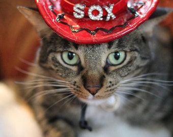 Personalized Midnight Cowboy hat for cats and dogs