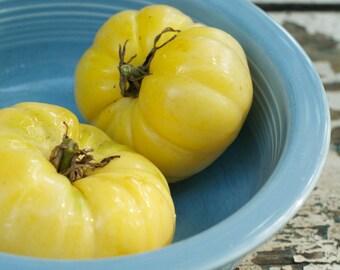 Jack White Tomato Seeds