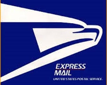 Express Mail Shipping USPS Domestic Only
