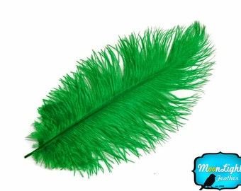 "Ostrich Plumes, 10 Pieces - 19- 24"" KELLY GREEN Ostrich Dyed Drabs Body Feathers : 3754"