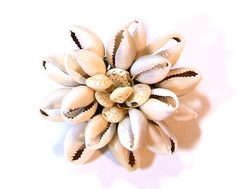Small Cowrie Shell Pin