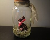 Easter Bunny Glass Mason Jar with faux chocolate Easter Bunny