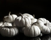 White Pumpkins Print- Rustic Kitchen Decor- Black and White Photography, October Typography