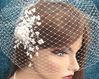 Detachable Birdcage Veil and Crystal Hair comb
