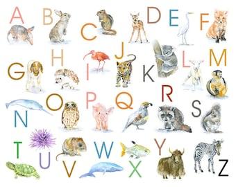 Alphabet Animals Watercolor Poster - 10 x 8 - Nursery Art - ABC wall art - 11 x 8.5 Animals Print