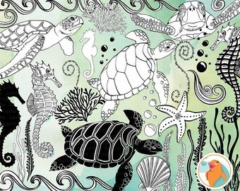 SeaHorse Line Art &  Turtles Outline, Sea Animal Doodle ClipArt + Photoshop Brush, Water, Aquarium Digital Stamps, Under the Sea