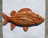 SALE- 6x6 Handmade and Hand-Painted Squirrel Fish Tile - SRA