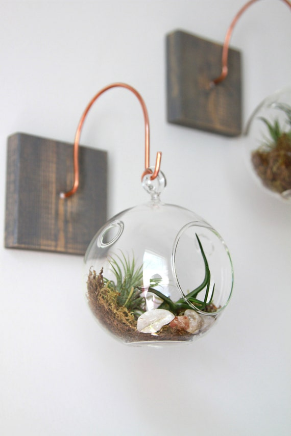 Wood and copper mount with terrarium unique wall decor for Handmade items for home