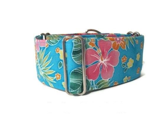 2 Inch Martingale Collar, Hawaiian Martingale Collar, Hawaiian Dog Collar, Floral, Greyhound Collar, Huggable Hound, Wide Dog Collar