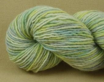 Hand Dyed Yarn - Multicolor Madness - Worsted Weight Yarn - 100% Wool Yarn