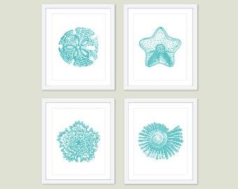 Ocean Prints -  Starfish Nautilus  Shells Art - Turquoise Blue - Bathroom Wall Art - Nautical Nursery - Sea Life Beach House Decor