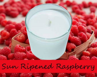 Sun Ripened Raspberry Scented Candle in Tumbler 13 oz BBW Type