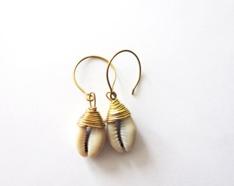 Gold wire wrapped Cowrie shell earrings