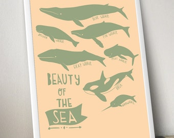 beauty of the sea poster large whale poster print