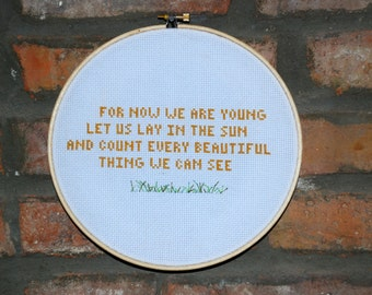 Neutral Milk Hotel - In the Aeroplane Over the Sea- Cross Stitch Lyrics
