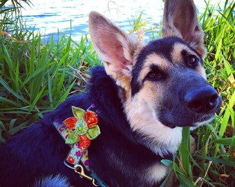 Add a Flower to my Leash or Harness - Crystal Dog Flower