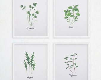 Herbs Kitchen Art - Any FOUR Herbs Watercolor Print Set  / 8x10 OR 8x11 Kitchen Print, Kitchen Decor
