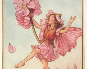 The Almond Blossom Fairy - Cross stitch pattern pdf format