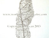 Art, Woodland, Autumn, Botanical, Leaf Skeleton - Limited Edition Glicee Print from Original Drawing