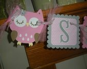 Owl Sugar & Sprice Banner, Owl Baby Shower Banner, Pink and Gray Owl Banner, Matching Tissue Poms Are Available