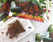 5 Milkweed Seeds Card Inserts NON-PROFIT, Monarch Butterfly Host Plant, Butterfly Theme Wedding Favor, Teacher Gift, Butterfly Bridal Shower