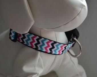 Personalized Dog Collar - Mulit Chevron