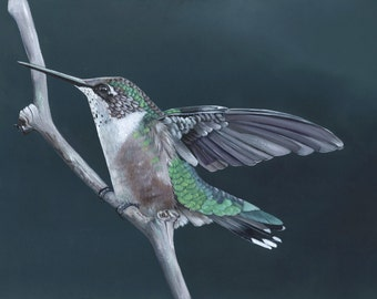 Hummingbird painting No 2 PRINT of acrylic painting. A4 size wall art print - bird art print