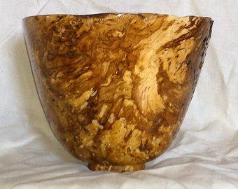 Lathe Turned Spalted Wormy Chesnut Oak Burl Wooden Bowl No. 172 Artist Signed Free Shipping