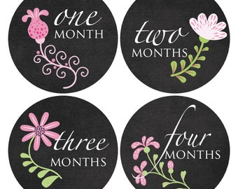 Chalkboard Baby Girl Stickers, Photo Props, Monthly Baby Stickers, My First, Document Baby's Milestones (133)