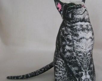 Vintage Smithsonian McGuffey's Cat