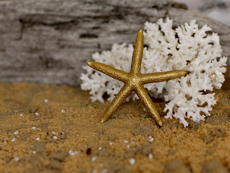 Beach Wedding Decor Gold Starfish Painted