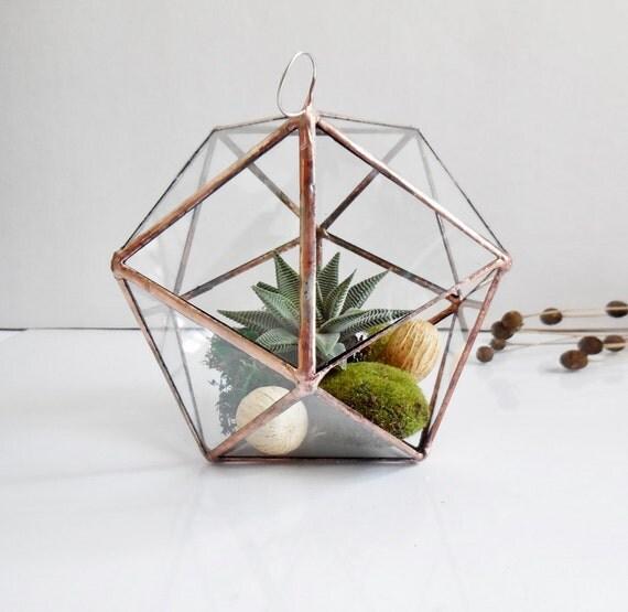 terrarium en verre suspendus terrarium en verre g om trique. Black Bedroom Furniture Sets. Home Design Ideas